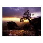 NA, USA, Arizona, Tucson, Sunset and lone Postcard