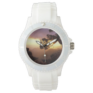 NA, USA, Arizona, Tucson, Sunset and lone Watches