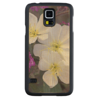 NA, USA, California, Anza Borrego Desert State Carved Maple Galaxy S5 Case