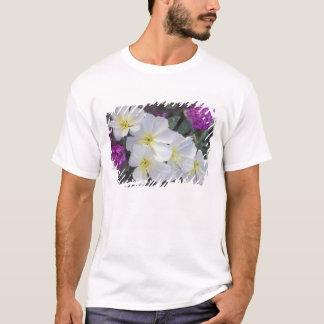 NA, USA, California, Anza Borrego Desert State T-Shirt