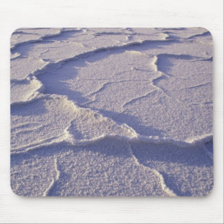 NA, USA, California. Death Valley National Mouse Mat