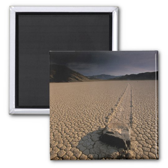 NA, USA, California, Death Valley National Square Magnet