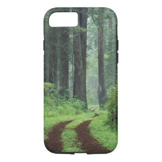 NA, USA, California. Del Norte Coast State Park. 3 iPhone 8/7 Case