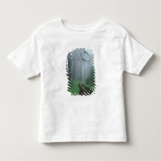 NA, USA, California. Del Norte Coast State Park. Toddler T-Shirt