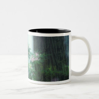 NA, USA, California, Del Norte Redwoods State Two-Tone Coffee Mug