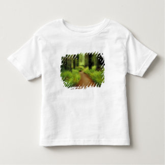 NA, USA, California, Jedediah Smith Redwoods Toddler T-Shirt
