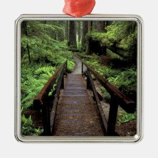 NA, USA, California, Jedidiah Smith Redwoods Christmas Ornament