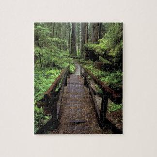 NA, USA, California, Jedidiah Smith Redwoods Jigsaw Puzzle