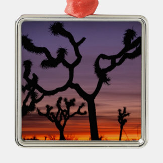 NA, USA, California. Joshua Tree National Christmas Ornament