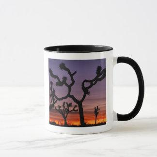 NA, USA, California. Joshua Tree National Mug