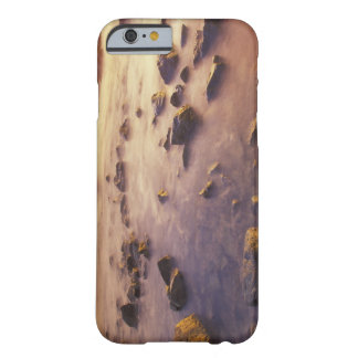 NA, USA, California, Northern California, Barely There iPhone 6 Case