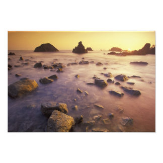 NA, USA, California, Northern California, Photo Print