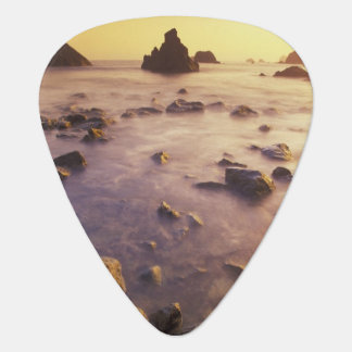 NA, USA, California, Northern California, Plectrum