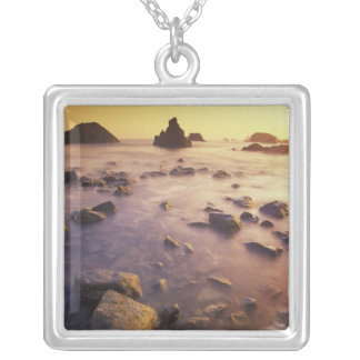 NA, USA, California, Northern California, Silver Plated Necklace