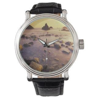 NA, USA, California, Northern California, Wrist Watch