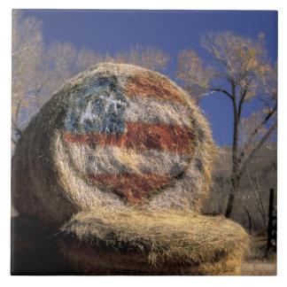 NA, USA, Colorado, Gunnison. Patriotic hay roll Large Square Tile