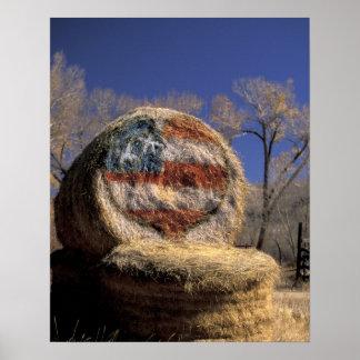 NA, USA, Colorado, Gunnison. Patriotic hay roll Poster