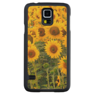 Na, USA, Colorado, Sunflowers Carved Maple Galaxy S5 Case