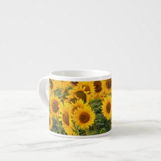 Na, USA, Colorado, Sunflowers Espresso Cup
