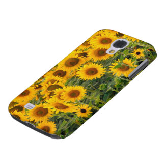 Na, USA, Colorado, Sunflowers Galaxy S4 Case