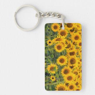 Na, USA, Colorado, Sunflowers Key Ring