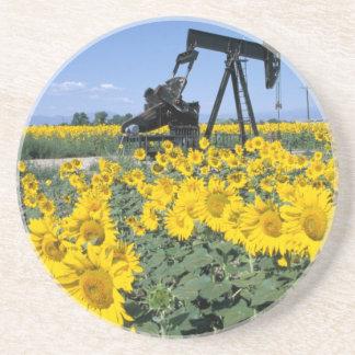 Na, USA, Colorado, Sunflowers, Oil Derrick Coaster