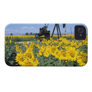 Na, USA, Colorado, Sunflowers, Oil Derrick iPhone 4 Case