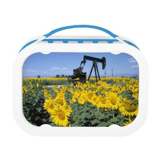 Na, USA, Colorado, Sunflowers, Oil Derrick Lunch Box