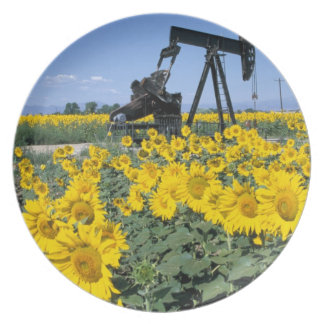 Na, USA, Colorado, Sunflowers, Oil Derrick Party Plates