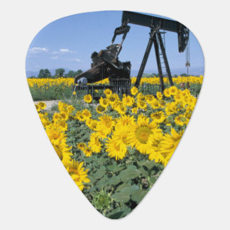 Na, USA, Colorado, Sunflowers, Oil Derrick Plectrum