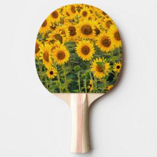 Na, USA, Colorado, Sunflowers Ping Pong Paddle