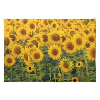 Na, USA, Colorado, Sunflowers Placemat