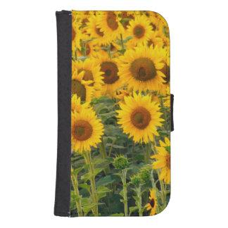 Na, USA, Colorado, Sunflowers Samsung S4 Wallet Case