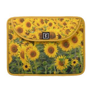 Na, USA, Colorado, Sunflowers Sleeve For MacBook Pro