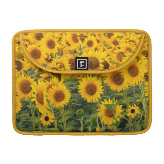 Na, USA, Colorado, Sunflowers Sleeves For MacBook Pro