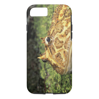 NA, USA, Florida, Miami.  Brazilian horned frog iPhone 8/7 Case