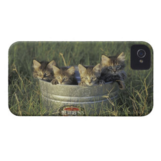 NA, USA, Florida, rural Florida. Eight-week-old iPhone 4 Case