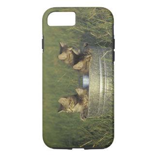 NA, USA, FLorida, rural Florida. Eight-week-old iPhone 8/7 Case