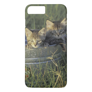 NA, USA, Florida, rural Florida. Eight-week-old iPhone 8 Plus/7 Plus Case