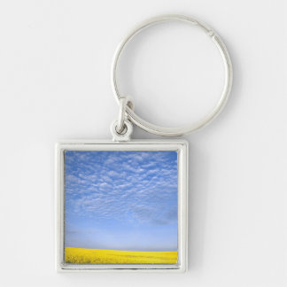Na, USA, ID, Grangeville, Field of Canola Crop Key Ring