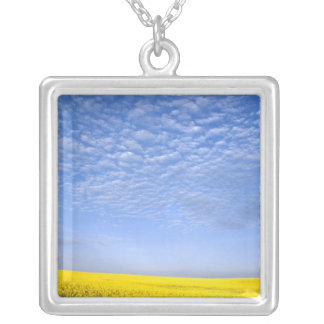 Na, USA, ID, Grangeville, Field of Canola Crop Silver Plated Necklace