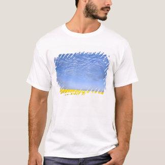 Na, USA, ID, Grangeville, Field of Canola Crop T-Shirt