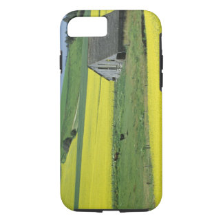 NA, USA, Idaho, near Potlatch, Canola and old iPhone 8/7 Case