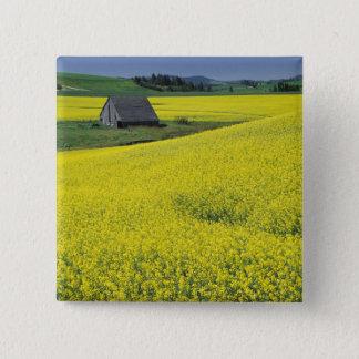 NA, USA, Idaho, near Potlatch, Wooden barn and 15 Cm Square Badge