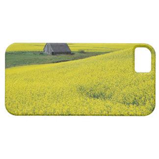 NA, USA, Idaho, near Potlatch, Wooden barn and Barely There iPhone 5 Case