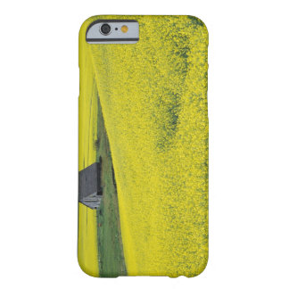 NA, USA, Idaho, near Potlatch, Wooden barn and Barely There iPhone 6 Case