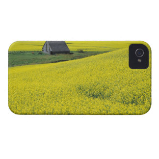 NA, USA, Idaho, near Potlatch, Wooden barn and iPhone 4 Case-Mate Cases