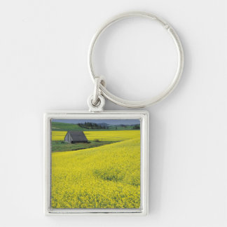 NA, USA, Idaho, near Potlatch, Wooden barn and Silver-Colored Square Key Ring
