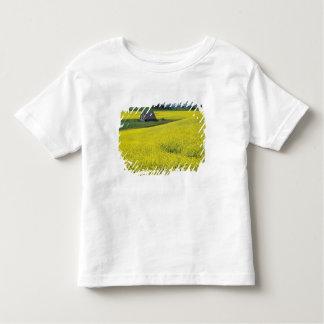 NA, USA, Idaho, near Potlatch, Wooden barn and Toddler T-Shirt