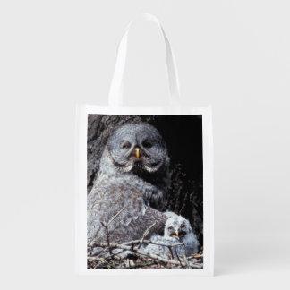 NA, USA, Idaho, Teton Valley. Great gray owl